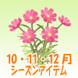 コスモス【紅】