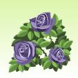 バラ【紫】