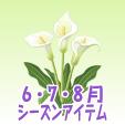 カラー【白】