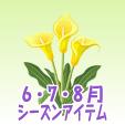 カラー【黄】