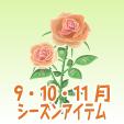 ロイヤルローズ【ピンク】
