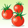 プチトマト<練習用>