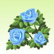 バラ【青】