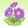 ガーベラ【紫】