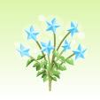 天空の星の花【蒼】