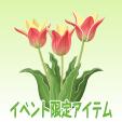 アンシラ【レッド】