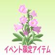 カンパニュラ【モルガナイト】