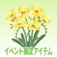 フリージア【黄】