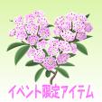 カルミア【薄桃】