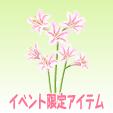 リコリス【インカルナータ】