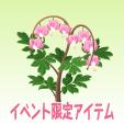 ケマンソウ【ピンク】