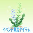 ニコット海藻