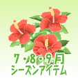 ハイビスカス【赤】