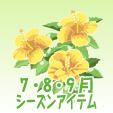 ハイビスカス【黄】