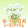 コスモス【白】