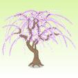 しだれ桜【紫】